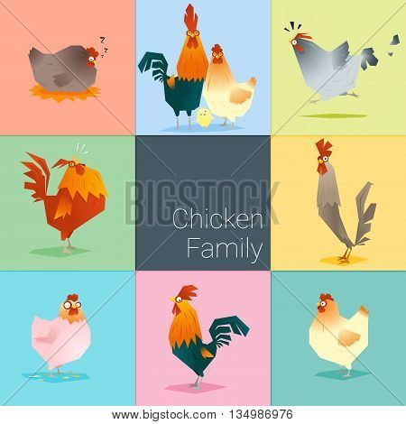 Set of chicken family , vector , illustration