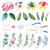 Foral collection with flowers, peony, leaves, branches, succulent plant, pansy flowers, ribbons and more. poster