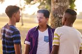 Youth culture young people group of male friends multi-ethnic teens outdoors multiracial boys together in park. Kids smoking electronic cigarette e-cig smokers. Health problems social issues poster