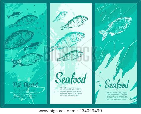 Layout Banners With. Vector Illustration With Sketches Of Fish. Round Composition. Hand Drawn Fish.