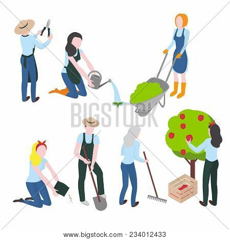 Harvesting And Farming. Gardening And Agriculture. Flat Gardener Character. Work And Hobby