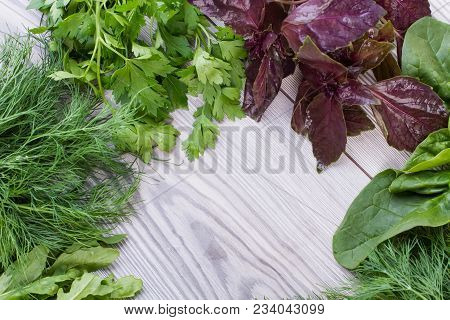 Variety Of Fresh Organic Herbs On Wooden Background. Freshly Harvested Herbs Including Basil, Arugul