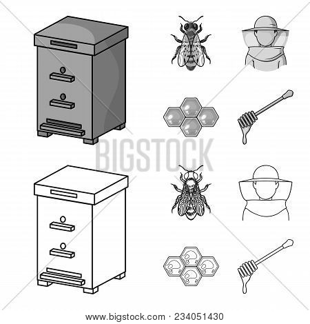 The Bee, The Bee-keeper In The Mask, The Honeycomb Of The Honey.apiary Set Collection Icons In Outli