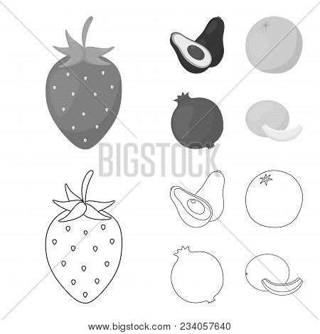 Strawberry, Berry, Avocado, Orange, Pomegranate.fruits Set Collection Icons In Outline, Monochrome S