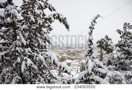 Christmas concept at Kozani town. Cityscape view between snowy trees from higher ground. Snow at rooftops of buildings background.