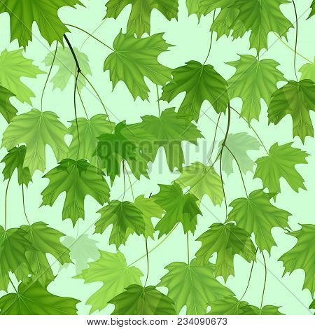 Seamless Pattern With Green Maple Leaves. Vector.