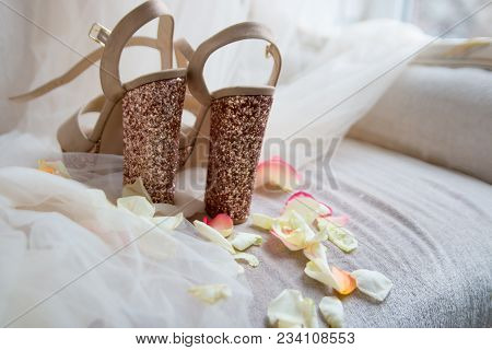 Elegant Festive Shiny Gold Shoes On A Light Tulle In Rose Petals For The Bride Back