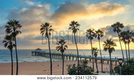 Palm Trees On Manhattan Beach At Sunset, Los Angeles, California.