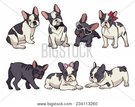 Illustrations Set Of Cute Little French Bulldog. Funny Pictures Of Puppy. Vector French Bulldog Funn