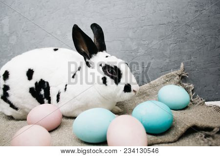 Easter Eggs Cute Bunny On Rustic Background. The Rabbit At Home.