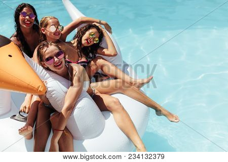 Beautiful Women Floating On A Big Inflatable Swan In Swimming Pool. Group Of Female Friends Relaxing