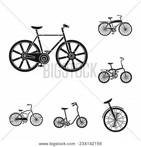 Various Bicycles Black Icons In Set Collection For Design. The Type Of Transport Vector Symbol Stock