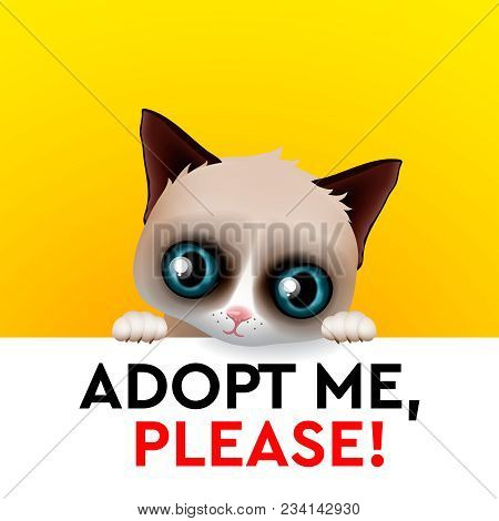 Adopt Me, Red Heart, Cute Cartoon Character, Help Animal Concept, Pet Adoption, Vector Illustration.