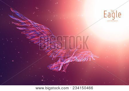 Vector Eagle In Flight To The Sun From Abstract Swirl Lines. Eagle In Motion, Blue And Red Lines. Co