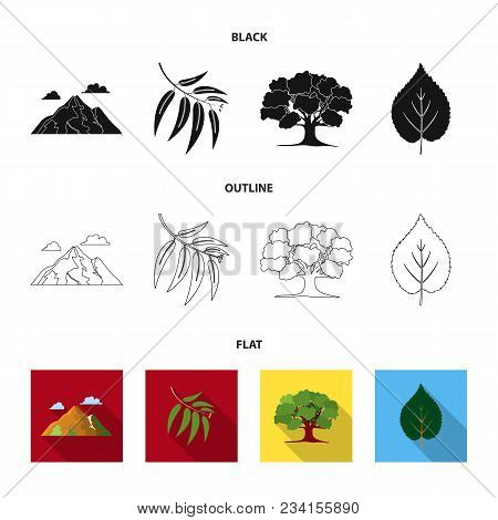 Mountain, Cloud, Tree, Branch, Leaf.forest Set Collection Icons In Black, Flat, Outline Style Vector