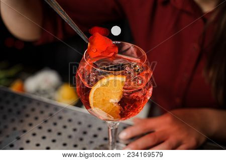 Barmaid In A Red Dress Finishes The Preparation Of An Alcohol Cocktail Spritz Veneziano, Adding A Ro