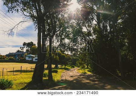 Hobart, Australia - December 25th, 2013: Jindabyne Road, Boronia Reserve, Kingston, Tasmania