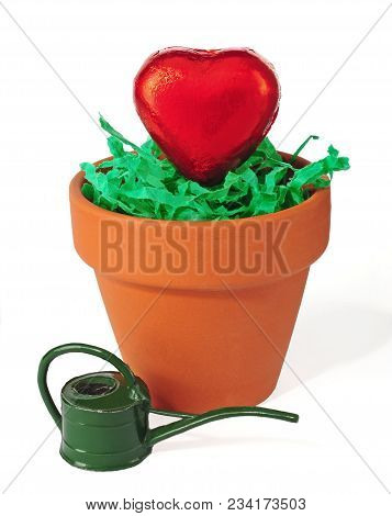 Let Love Grow, Two Hearts Potted Isolated Over White Background