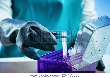 Biobanking. Technician Preparing Biological Sample For Deep Freezing