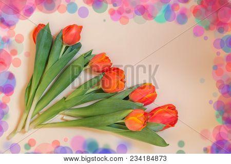 Bunch Of Fresh Orange Spring Tulip Flowers