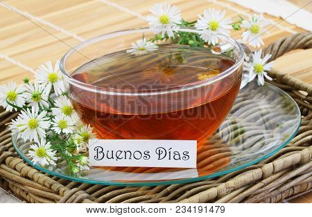 Buenos Dias (which Means Good Morning In Spanish) Card With Cup Of Chamomile Tea With Fresh Chamomil