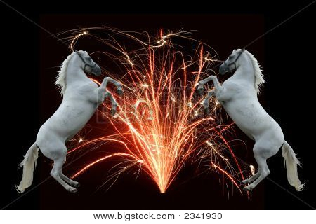Fireworks And Horses