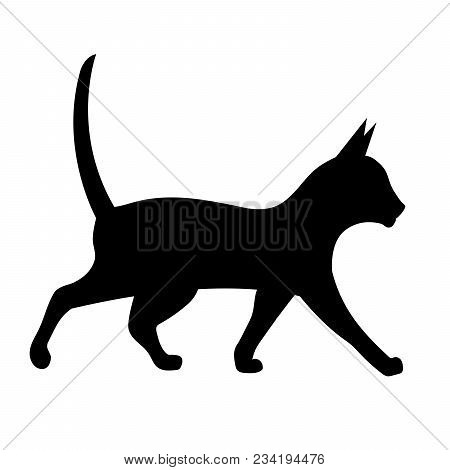 Black Silhouette Of A Walking Cat. Vector Illustration