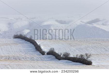 Winter Scene Saskatchewan Badlands Big Muddy Valley