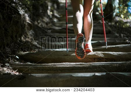 Female athletes with sticks for walking on ladder of logs