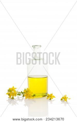 St. John's Wort Oil In Glass Bottle.
