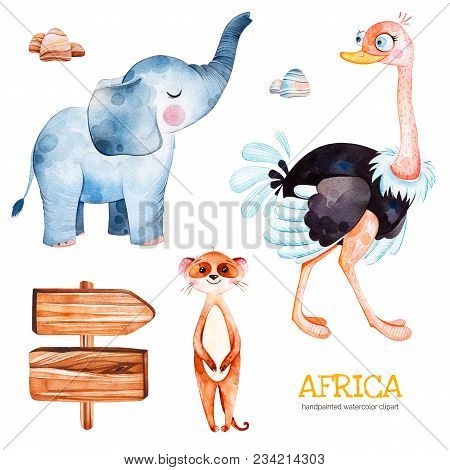 Safari Collection With Ostrich, Elephant, Meercat, Wooden Sign, Stones. Watercolor Cute Animals.
