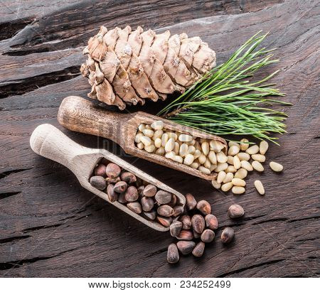 Pine nuts in the wooden scoops and pine nut cone on wooden background. Organic food.