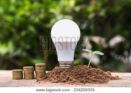 Led Blub With Green Seedling And Money On Dirt. Concept Saving Energy Power