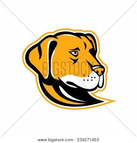 Mascot Icon Illustration Of A Head Of A Labrador, Labrador Retriever Or  Lab, A Type Of Retriever-gu
