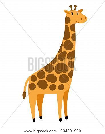 Giraffe. Vector Cartoon Tall Giraffe Character, Cute African Animal With Spots Isolated On White Bac