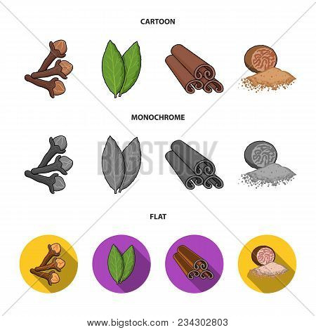 Clove, Bay Leaf, Nutmeg, Cinnamon.herbs And Spices Set Collection Icons In Cartoon, Flat, Monochrome