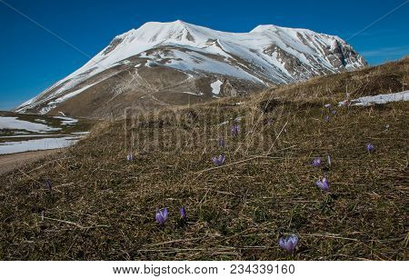 Photo Of Vettore Mountain With Snow In The Spring Season