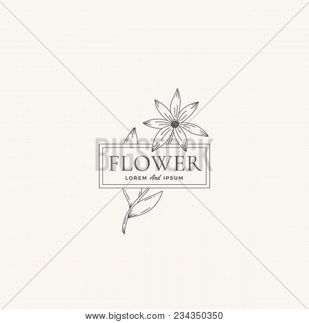 Flower Abstract Vector Sign, Symbol Or Logo Template. Retro Flower Illustration With Classy Typograp