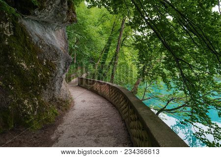 Hiking Trail In Forest, Lake Bled, Alps, Slovenia. Pathway Lane Way, Green Trees. Beautiful Road, Al