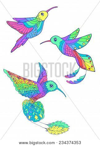 Set Of Three Stylized Drawings. Rainbow Hummingbirds On Isolated Background. Bright Tropical Birds.