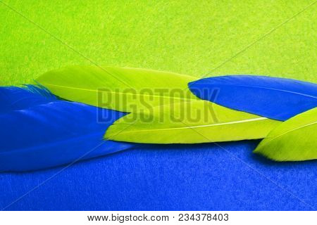 Blue and green feathers. Carnival. Colored feathers.