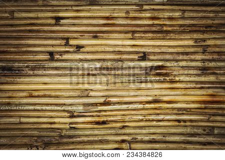 Bamboo Texture Background Pattern. Horizontal Trunks Of Bamboo Wood, Varnished On The Background. Wo