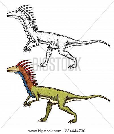 Dinosaurs Deinonychus, Skeletons, Fossils. Prehistoric Reptiles, Animal Engraved Hand Drawn Vector