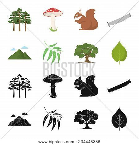 Mountain, Cloud, Tree, Branch, Leaf.forest Set Collection Icons In Black, Cartoon Style Vector Symbo