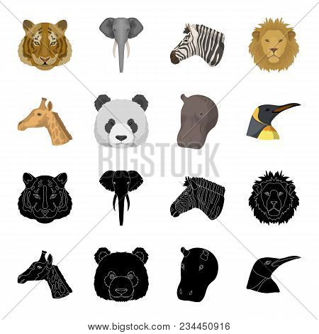 Panda, Giraffe, Hippopotamus, Penguin, Realistic Animals Set Collection Icons In Black, Cartoon Styl
