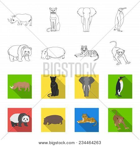 Bamboo Bear, Hippopotamus, Wild Animal Tiger, Monkey . Wild Animal Set Collection Icons In Outline,