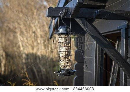 Bird Feeder Cage On A Wooden Shed In A Garden With Grain