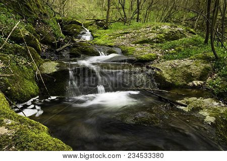 Colorful Green Forest With Trees Stones Waterfall And Cascade. Nature Background With Beautiful Blur