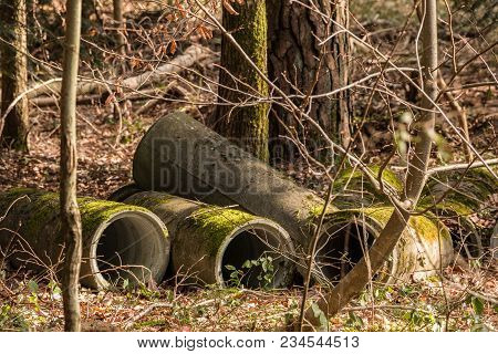 Big Concrete Pipes In The Middle Of The Forest