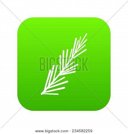 Rosemary Spice Icon Digital Green For Any Design Isolated On White Vector Illustration